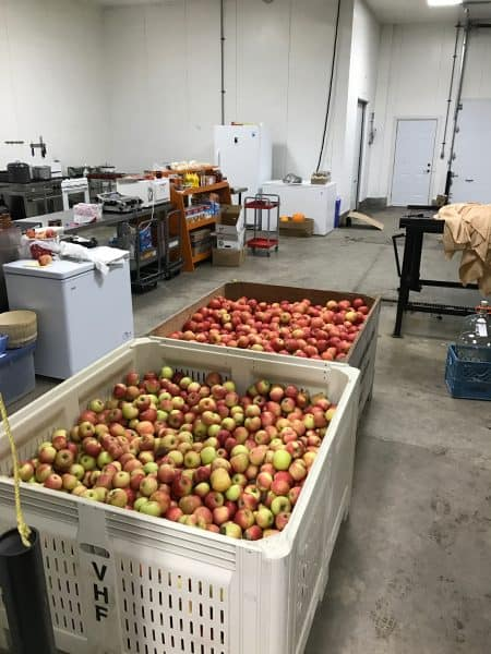 Two bins of apples were required to meet the cider demands of our club. That's a lot of apples.